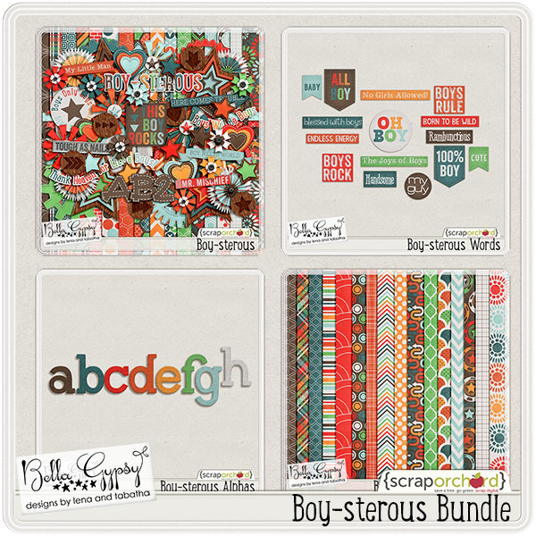 bg-boysterousBUNDLE