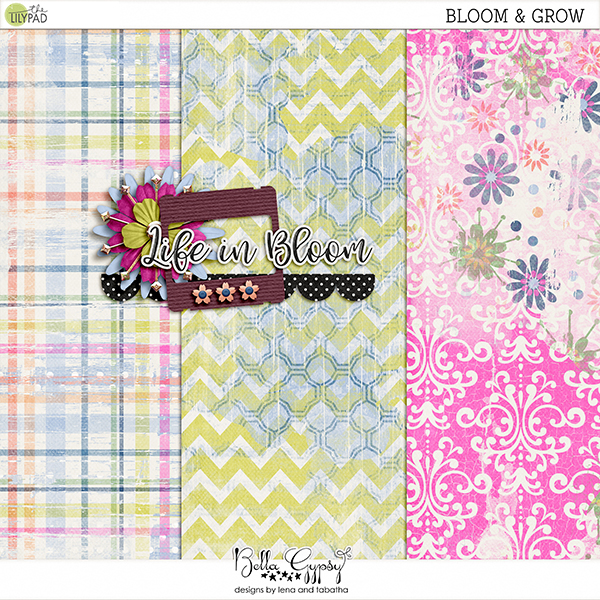 iNSD Bloom & Grow Blog Hop